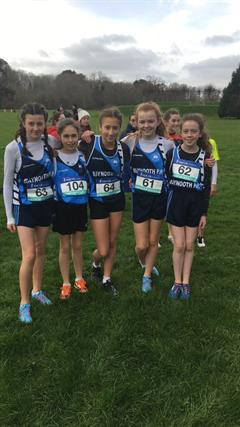 Athletics - Leinster Cross Country Finals